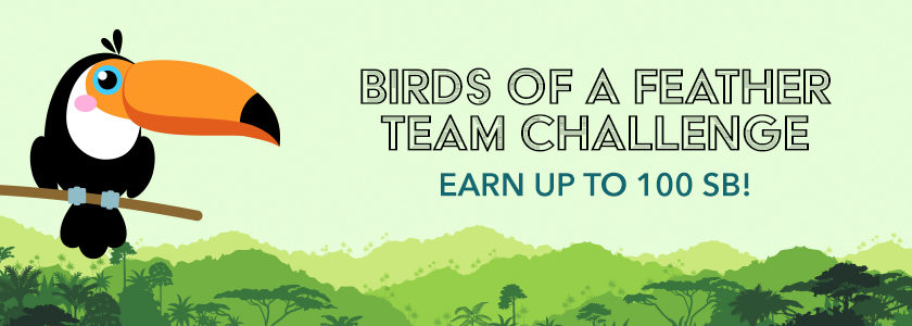 Birds of a Feather Team Challenge