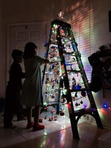 2016 Ladder Tree